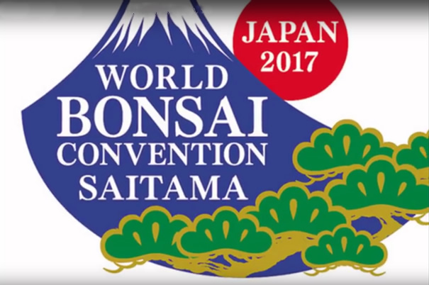 WBFF 8th Convention Saitama